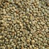 ROBUSTA-COFFEE-BEANS-FOR-SALE