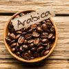 arabica kantata