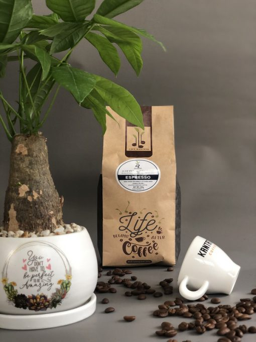 Cafe Espresso Kantata với hương vị đậm đà quyến rũ